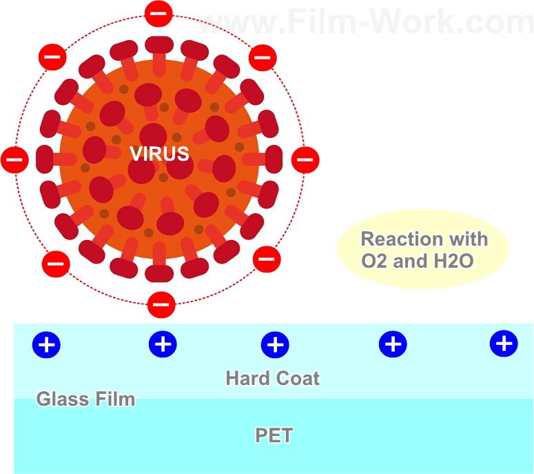 抗ウイルス・抗菌フィルム-RIVEX RIKEGUARD/リベックス リケガードの機能