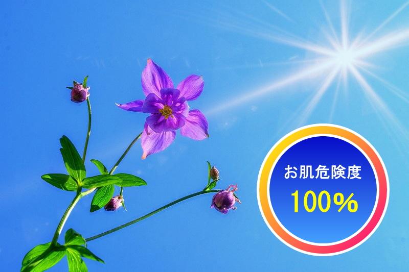 紫外線UVによる肌の危険性