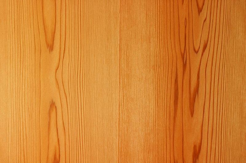 杉、スギ板
