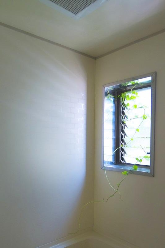 ジャロジー窓、ルーバー窓