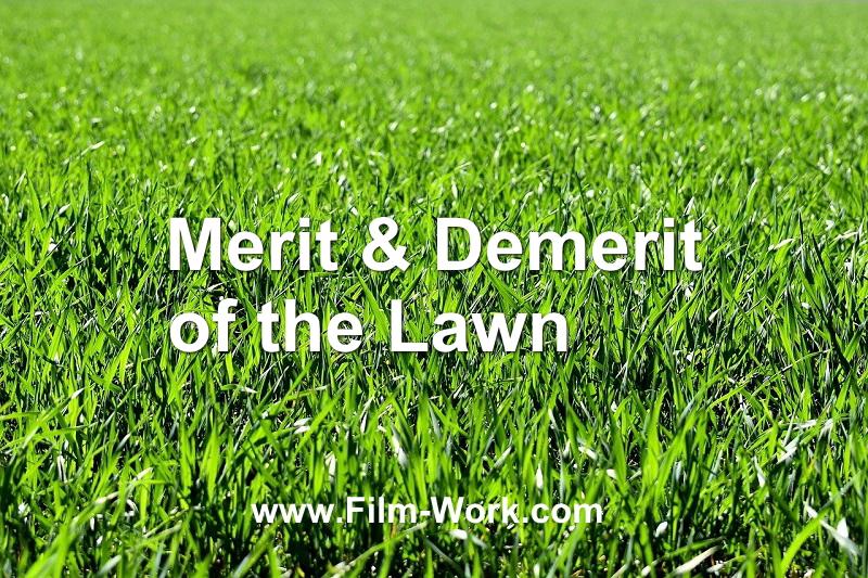 天然芝のメリット、デメリット