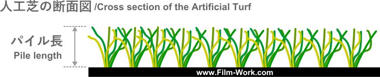 人工芝の断面図/Cross section of the artificial turf